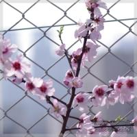 blog_100320_06.jpg